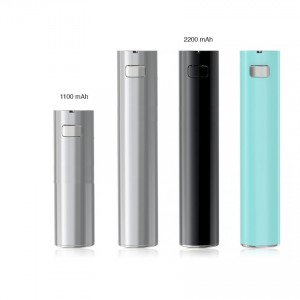 batterie eGo one